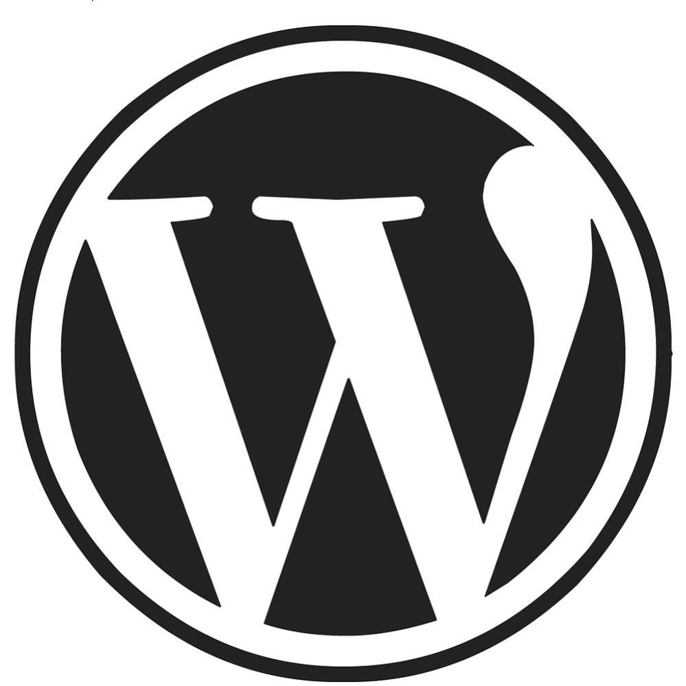 12 top wordpress web design company in navi mumbai